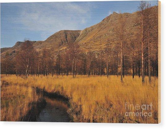 Glen Torridon Wood Print