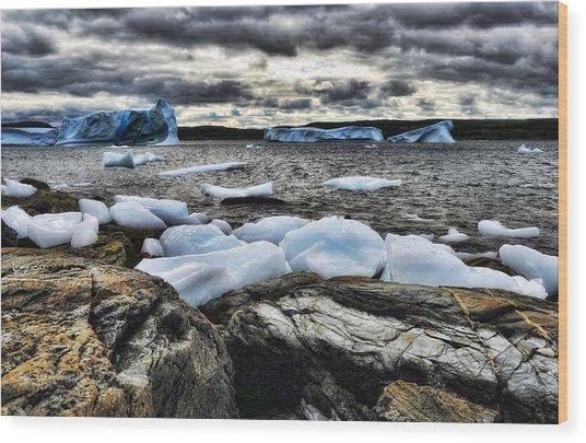 Icebergs At St. Anthony Wood Print
