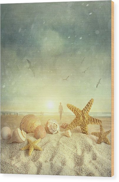 Starfish And Seashells  At The Beach Wood Print
