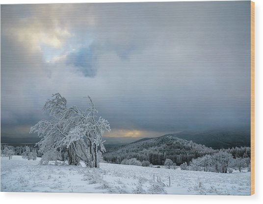Typical Snowy Landscape In Ore Mountains, Czech Republic. Wood Print