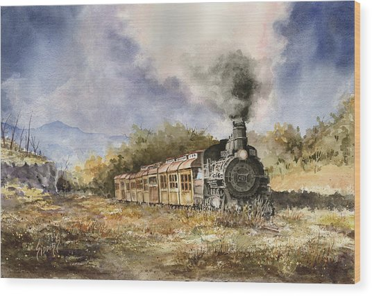 481 From Durango Wood Print