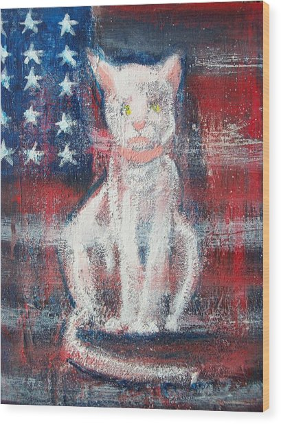 4th Of July Baby Wood Print by Roxanna Finch