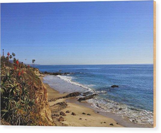 Laguna Beach California Wood Print