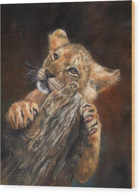 Lion Cub Wood Print