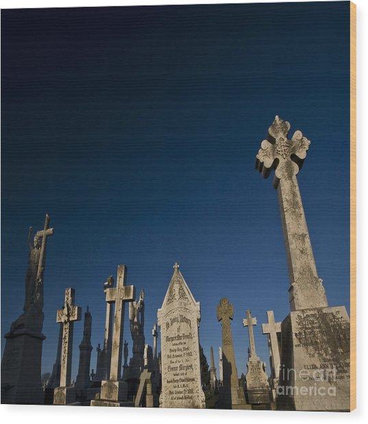 The Graveyard Wood Print by Angel Ciesniarska