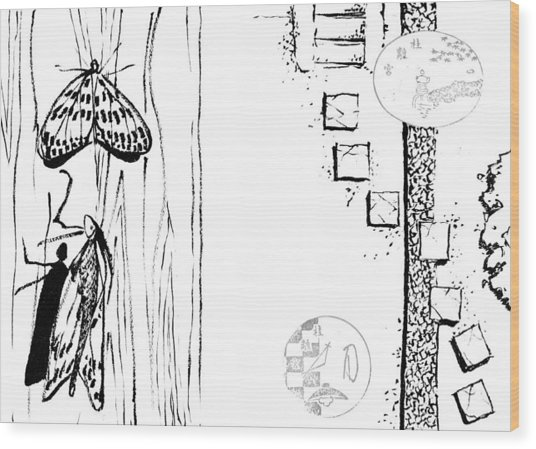 5.4.japan-1-butterfly-and-walkway Wood Print