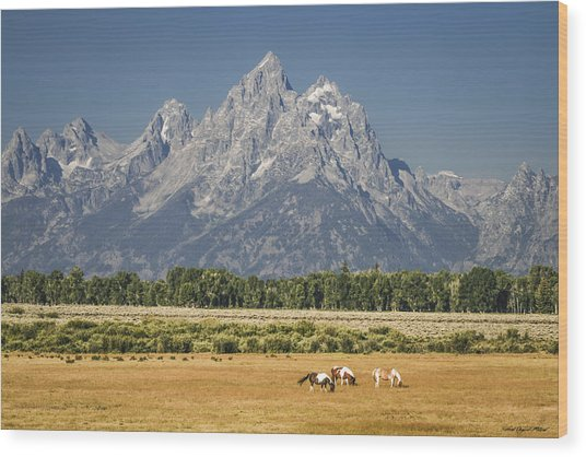 #5687 - Wyoming Wood Print
