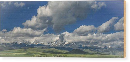 #5773 - Southwest Montana Wood Print