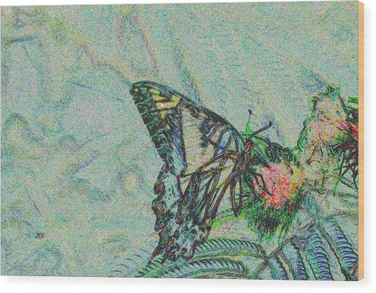 5859 5 Wood Print by Jim Simms