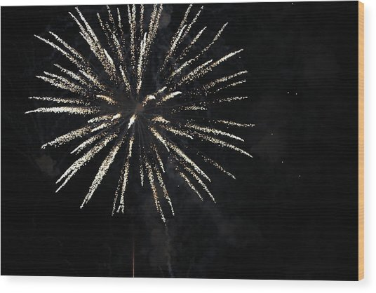 Fireworks Wood Print by Diane Falk