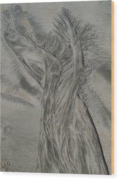 Sand Reels Wood Print