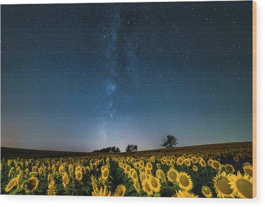Sunflower Galaxy Wood Print