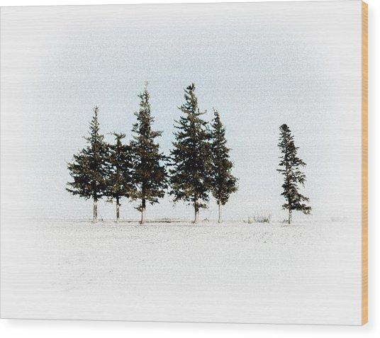 6 Trees Wood Print