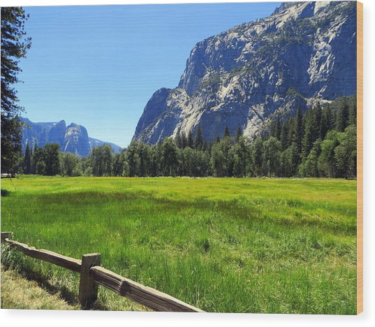 Yosemite Meadow Photograph Wood Print