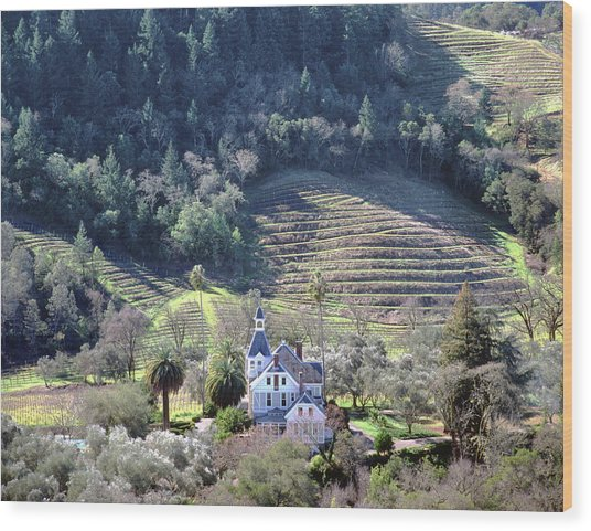 6b6312 Falcon Crest Winery Grounds Wood Print