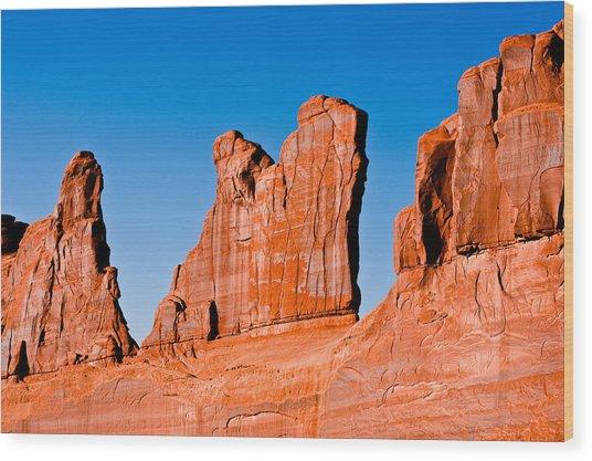 Canyonland N.p. Wood Print