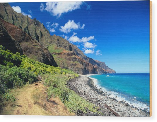 Na Pali Coast Wood Print by Peter French - Printscapes