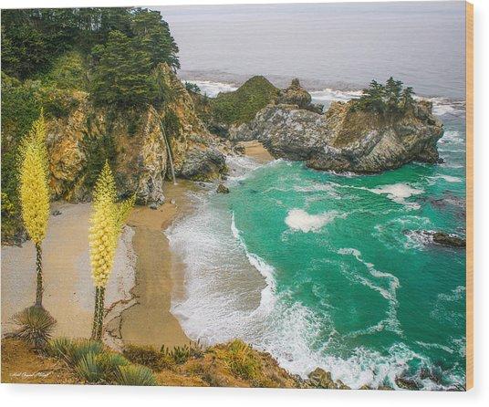 #7842 - Big Sur, California Wood Print