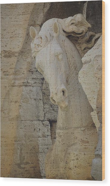 Horse In The Fountain  Wood Print by JAMART Photography