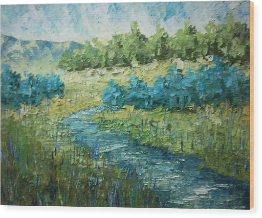South Of France Wood Print by Frederic Payet