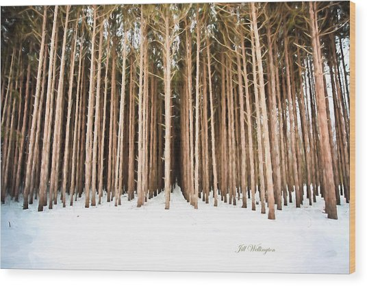 Michigan Winter Wood Print