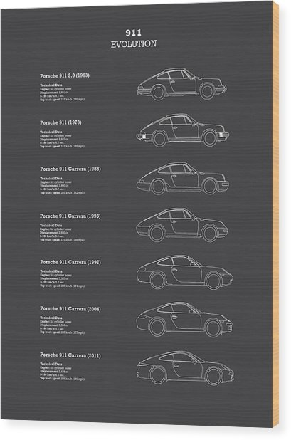 911 Evolution Wood Print