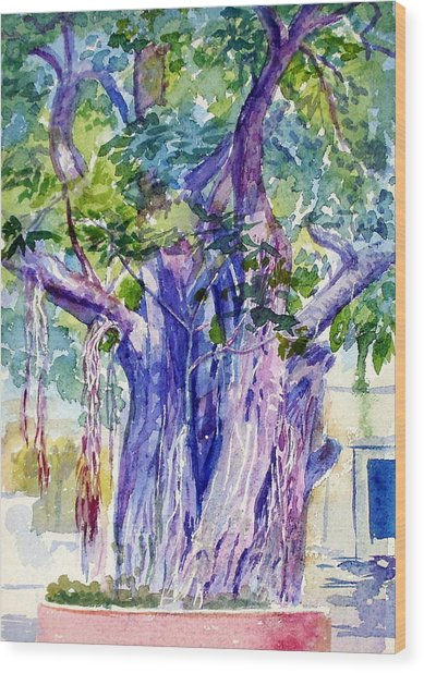 A Banayan Tree Wood Print