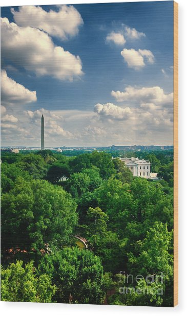 A Beautiful Day In Dc Wood Print