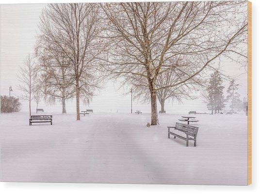 A Beautiful Winter's Morning  Wood Print