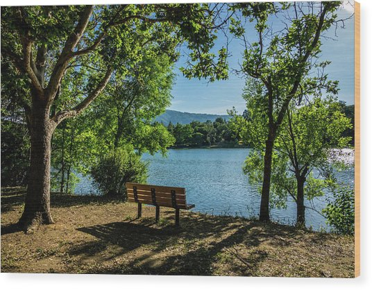 A Bench Overlooking Vasona Lake Wood Print