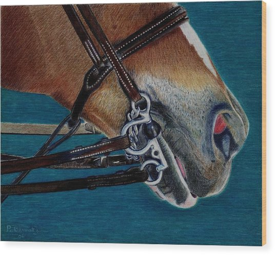 A Bit Of Control - Horse Bridle Painting Wood Print