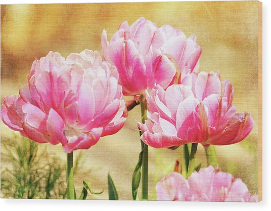 A Bouquet Of Tulips Wood Print