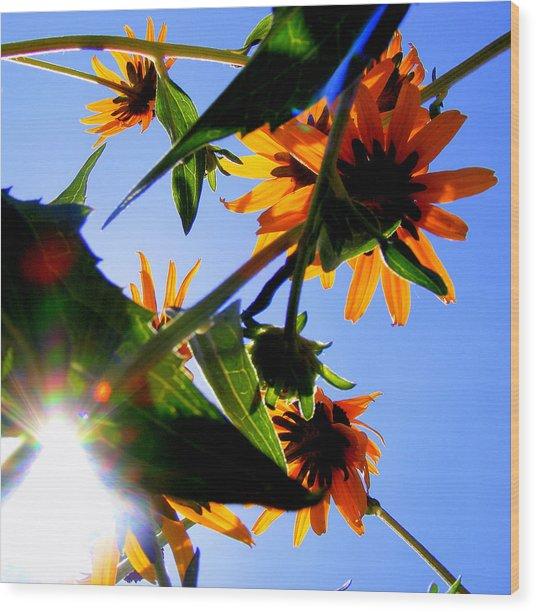 A Burst Of Sunshine Wood Print by Sherwanda Irvin