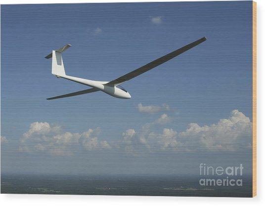 Arolladen-schneider Ls4 Glider Wood Print