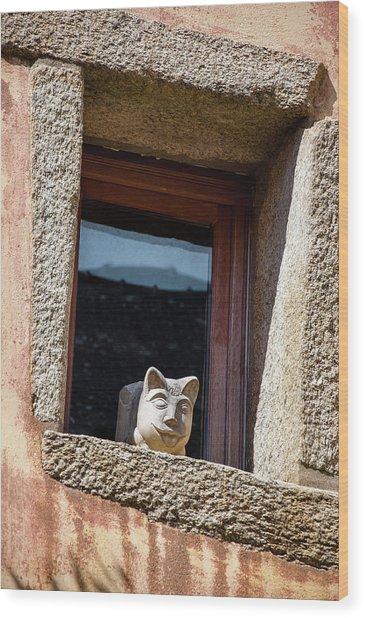 A Cat On Hot Bricks Wood Print