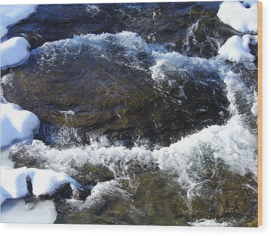 A Chilly Froth Circles A Resting Stone Wood Print by Terrance DePietro
