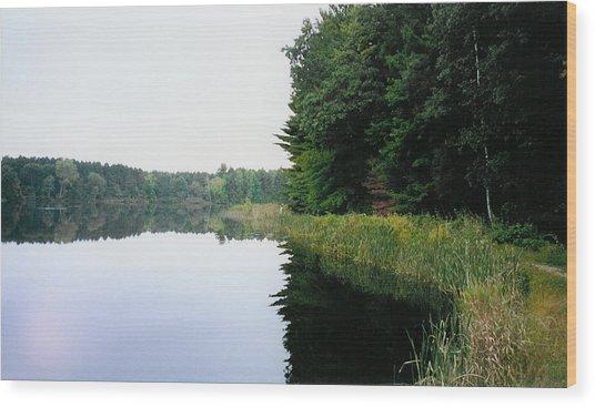 A Clear Day Wood Print by Tom Hefko
