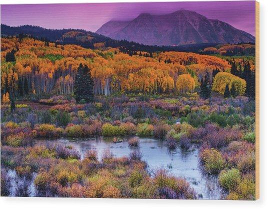 Wood Print featuring the photograph A Colorado Fall Along Kebler Pass by John De Bord