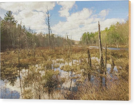 A Connecticut Marsh Wood Print