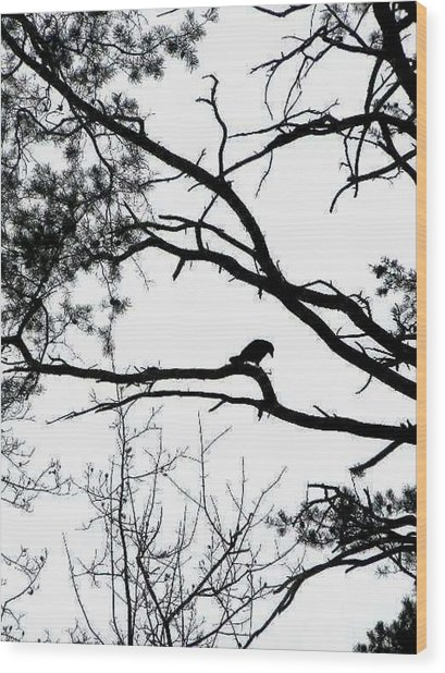 A Crow Shook Down On Me The Dust Of Snow Wood Print