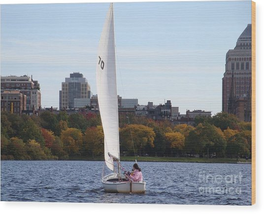 a day on the Charles Wood Print by Robyn Leakey