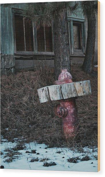 A Dog's Dream Wood Print
