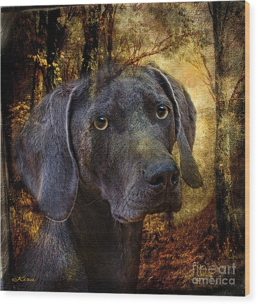 A Dogs Tale Wood Print
