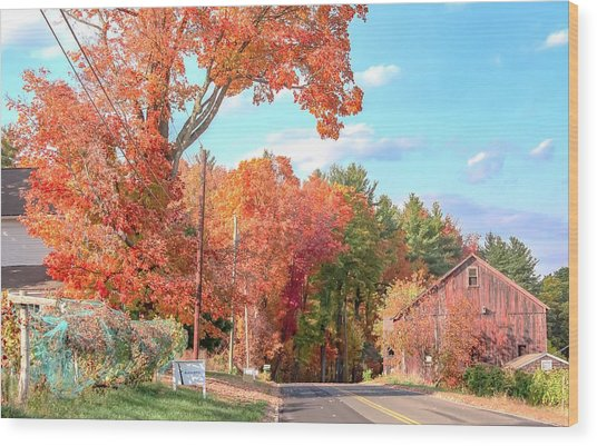 A Drive In The Country Wood Print