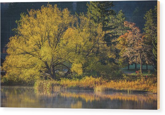 A Fall Day  Wood Print