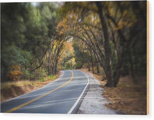 A Fall Roadway Wood Print
