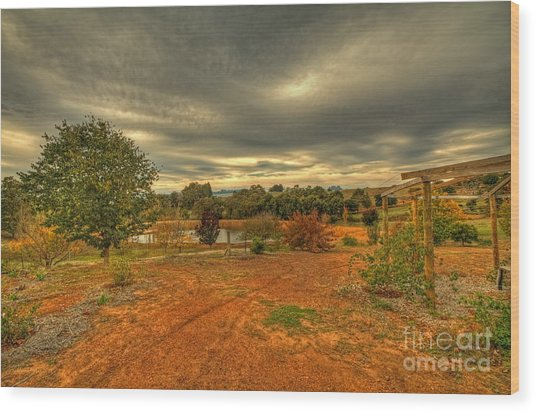 A Farm In Bridgetown, Western Australia Wood Print