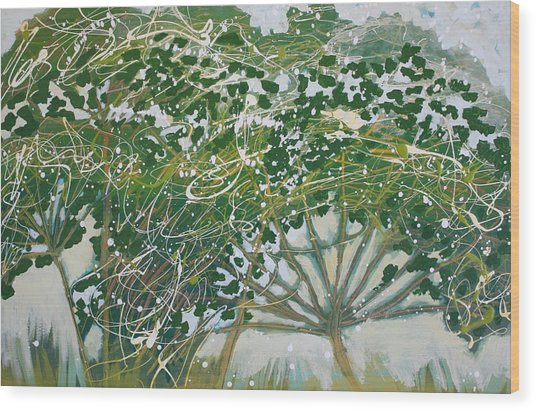 A Field Of Valerian Wood Print