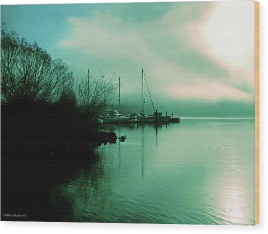 A Foggy Day At Log Boom Park On Lake Washington Wood Print
