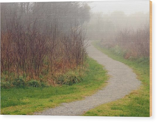 A Foggy Path Wood Print